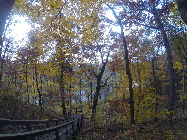 A Trail to the River - Amanda Wu