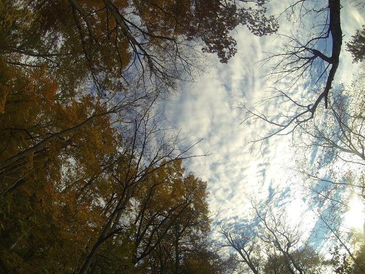 Indiana Sky - Amanda Wu