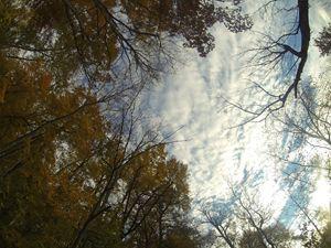 Indiana Sky