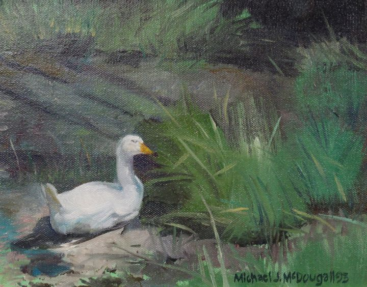 Pod Duck - Michael McDougall