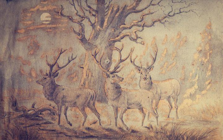 Moonlit Bucks - Robb Rokk