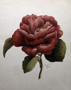 1865 Flower