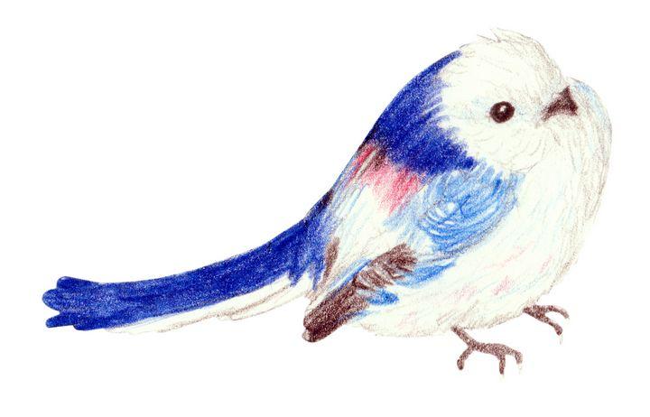 Little White Bird - Linda Ursin