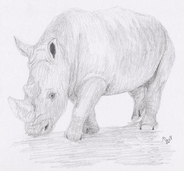 Rhino Pencil Sketch - Linda Ursin