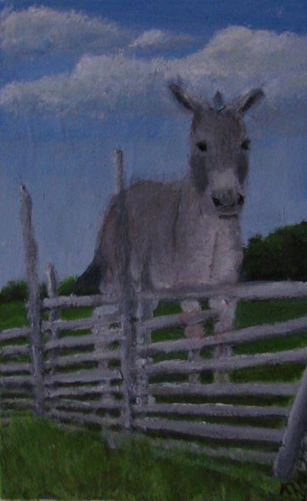 A Donkey for Stubbornness - Linda Ursin