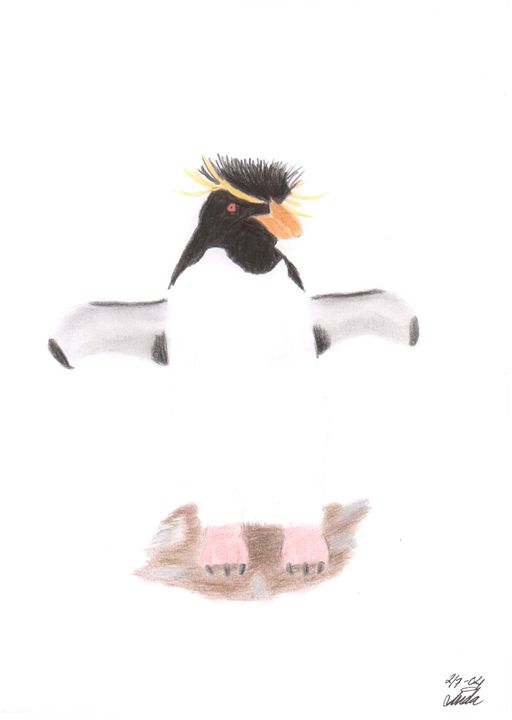 Rockhopper Penguin - Linda Ursin