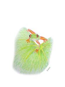 Tree Frog on a Leaf - Linda Ursin