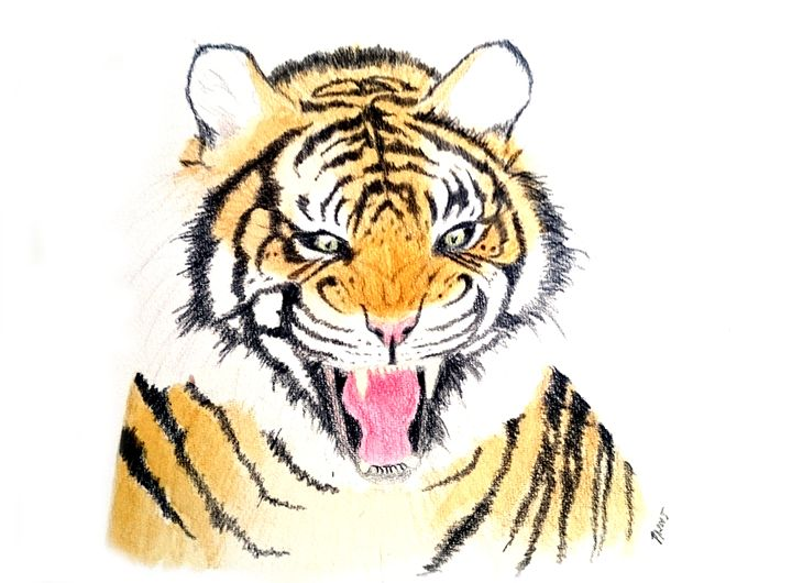 Tiger Roar - Linda Ursin