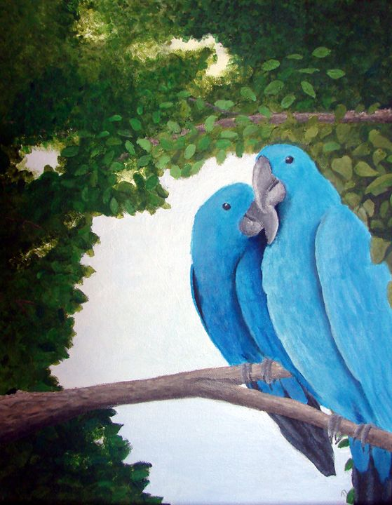 Macaws in Love - Linda Ursin