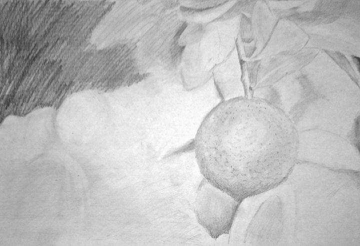 Lime - Linda Ursin