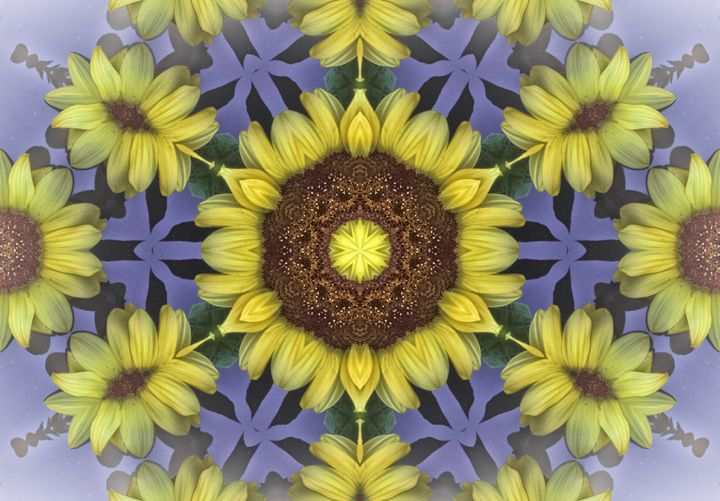 Sunflowers - Jus4fundesigns