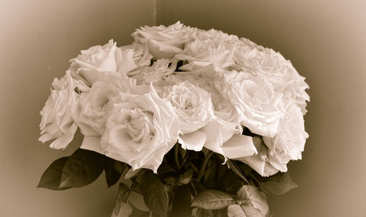 Sepia Roses - Jus4fundesigns