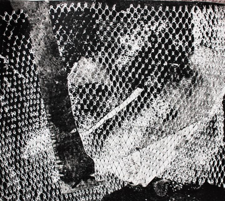 Cage - Art By Josette