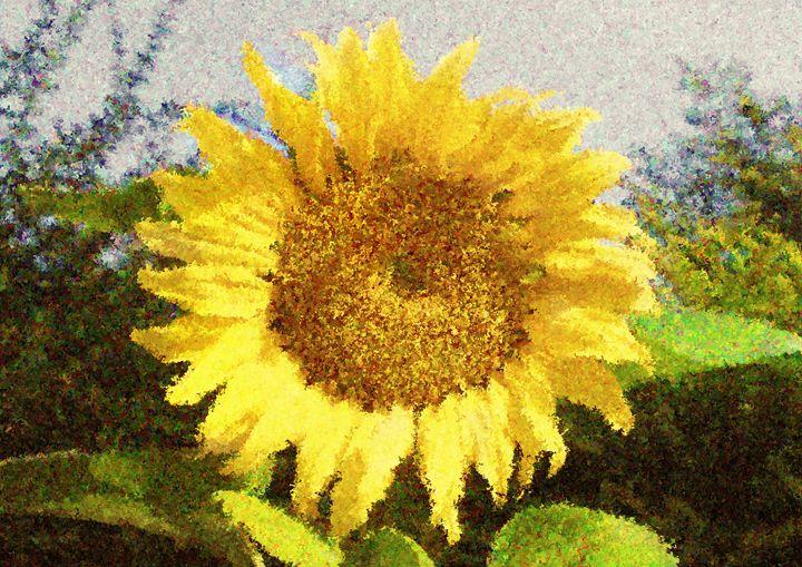 Sunflower - Mike-e-Art