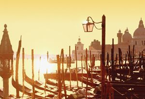 Venetian Taxis