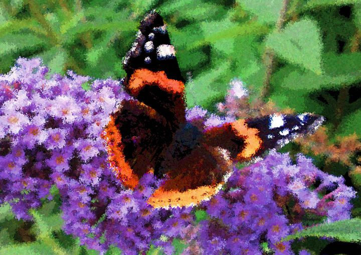 The Butterfly Bush - Mike-e-Art