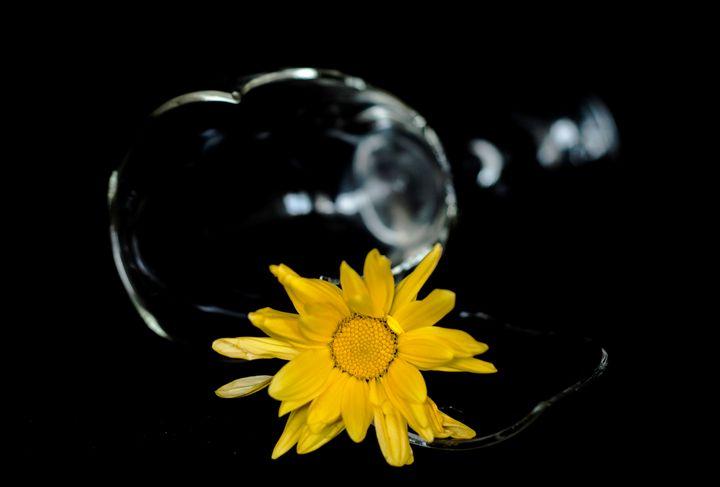 Cristal - J.O.Corradini