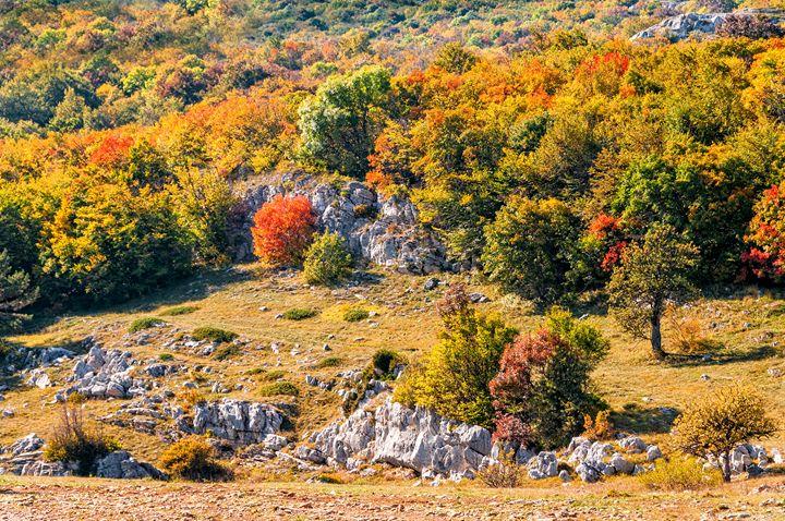 Crimean peak of Ai-Petri - Serhii Simonov photographer