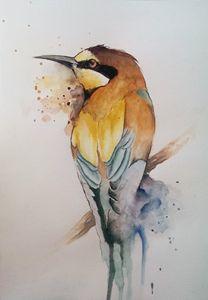 Original, Colorful bird. Watercolor