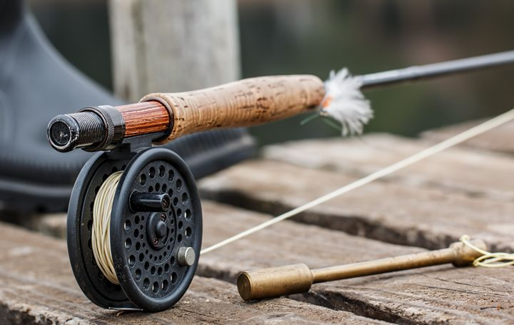 Fly Rod - paintings
