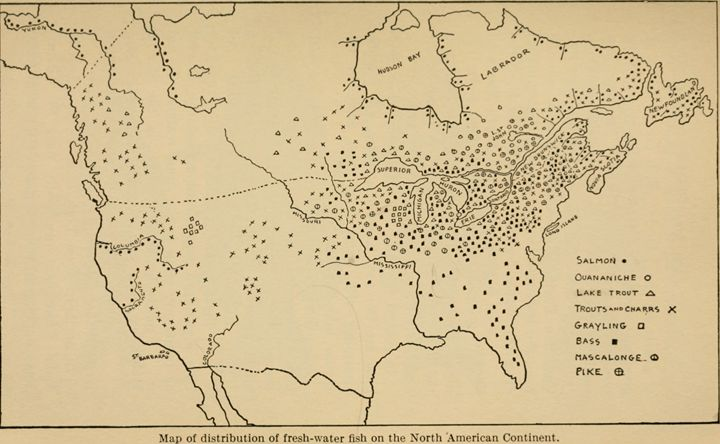 Fishing Map of North America 1908 - paintings
