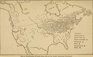 Fishing Map of North America 1908