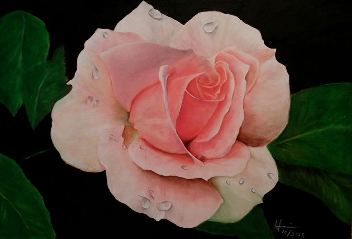 Pink Rose - Hannia Smith