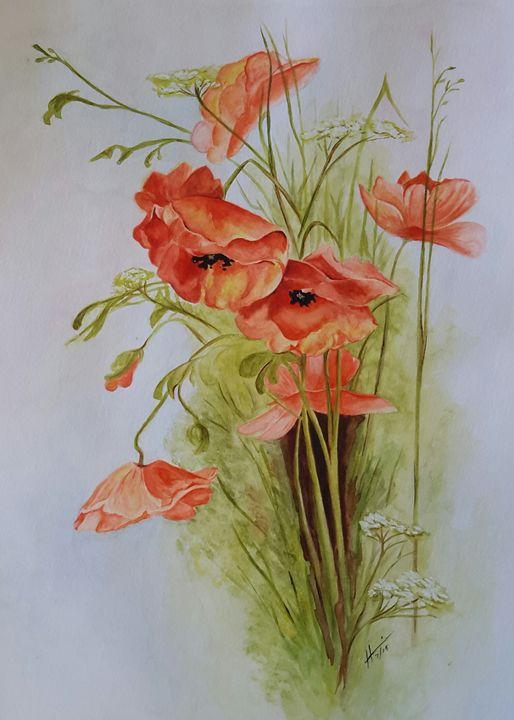 Poppies - Hannia Smith