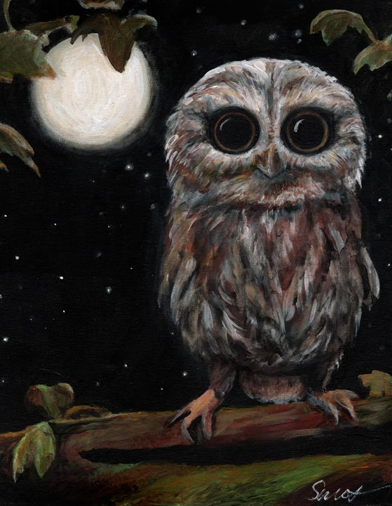 Night Owl - Art of Heather Secrest