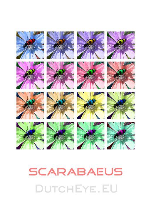 Scarabaeus-W - DutchEye.EU