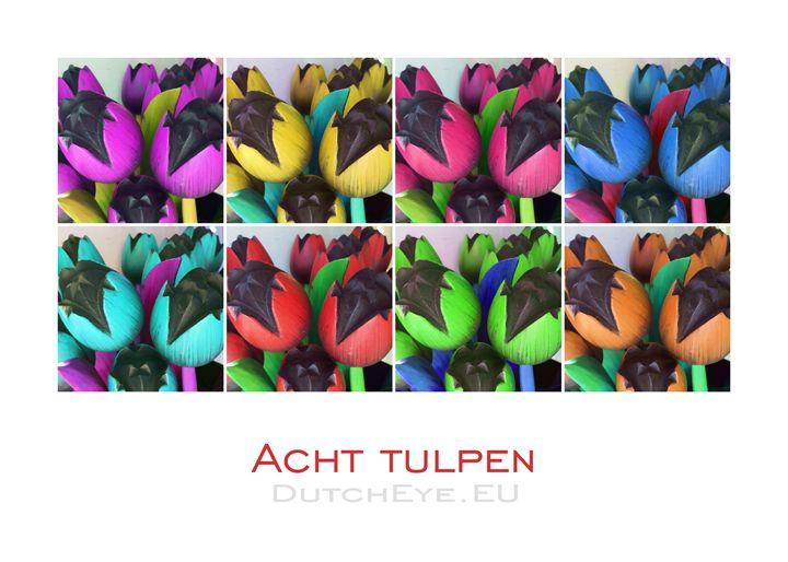 Acht tulpen - W - DutchEye.EU