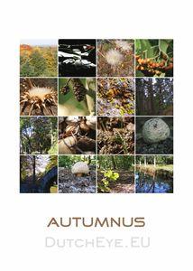 Autumnus - W