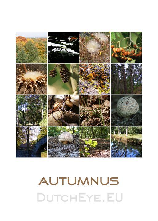 Autumnus - W - DutchEye.EU