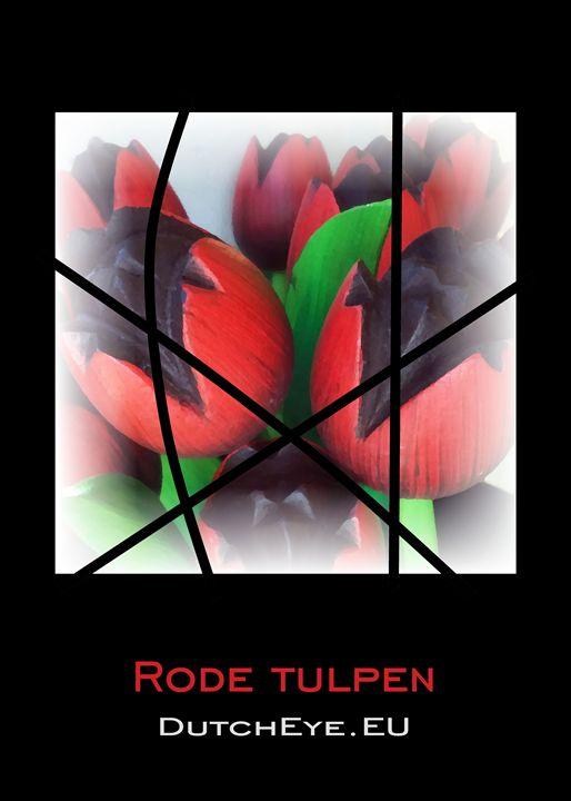 Rode tulpen - Z - DutchEye.EU