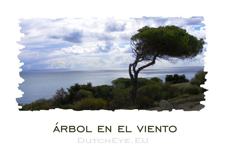 Arbol en el viento - W - DutchEye.EU