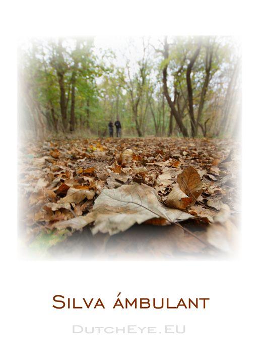 Silva Ambulant - W - DutchEye.EU