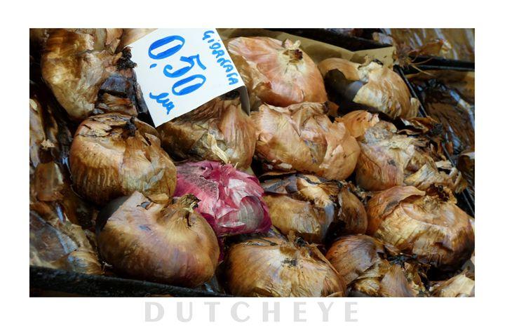 Red onion - DutchEye.EU