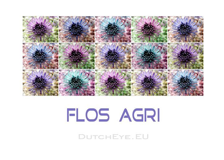 Flos Agri - W - DutchEye.EU