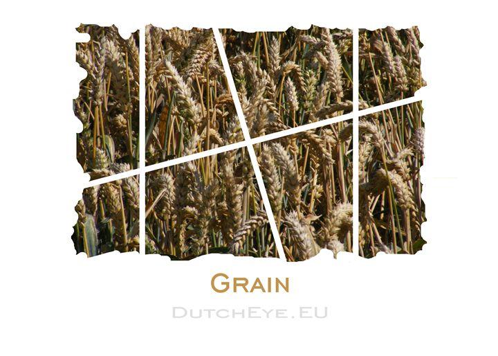 Grain - W - DutchEye.EU