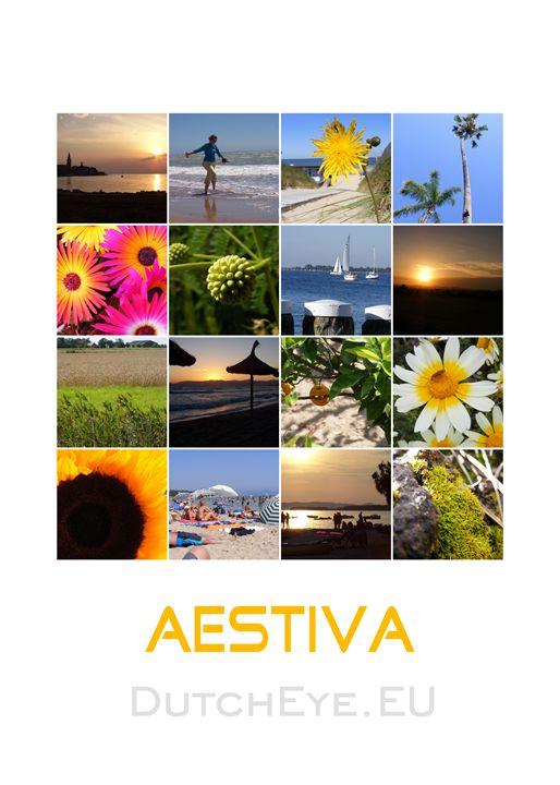 Aestiva - W - DutchEye.EU