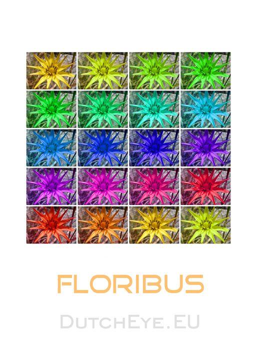 Floribus - W - DutchEye.EU