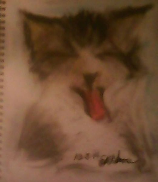 pastel-charcoal of a laughing kitten - BlueJayArt