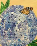 monarch Butterfly on a hydrangea