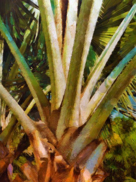 Tropic - Lelia DeMello