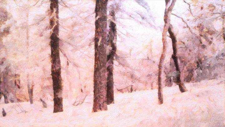 Winter Forest - Lelia DeMello