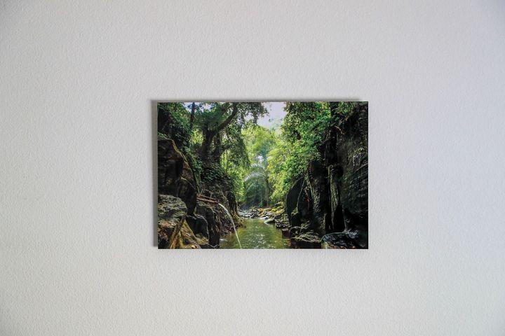 Ubud River - Indonesia