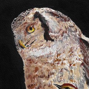 Owl & Finch