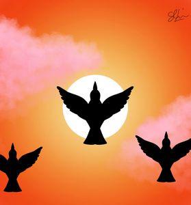 Birds with freedom