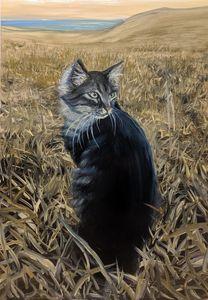 Lagos Cat