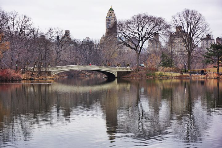 Central Park - Mute Photography